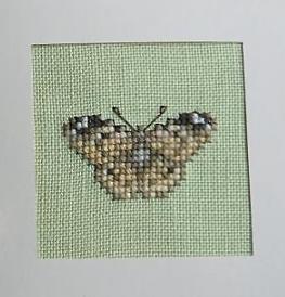 Papillon-Lanarte-08-01-2012 dans Divers