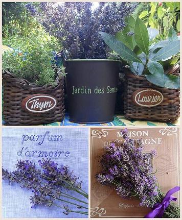 Senteurs d'été, parfum d'armoire  Cueillette-estivale-Aout2012